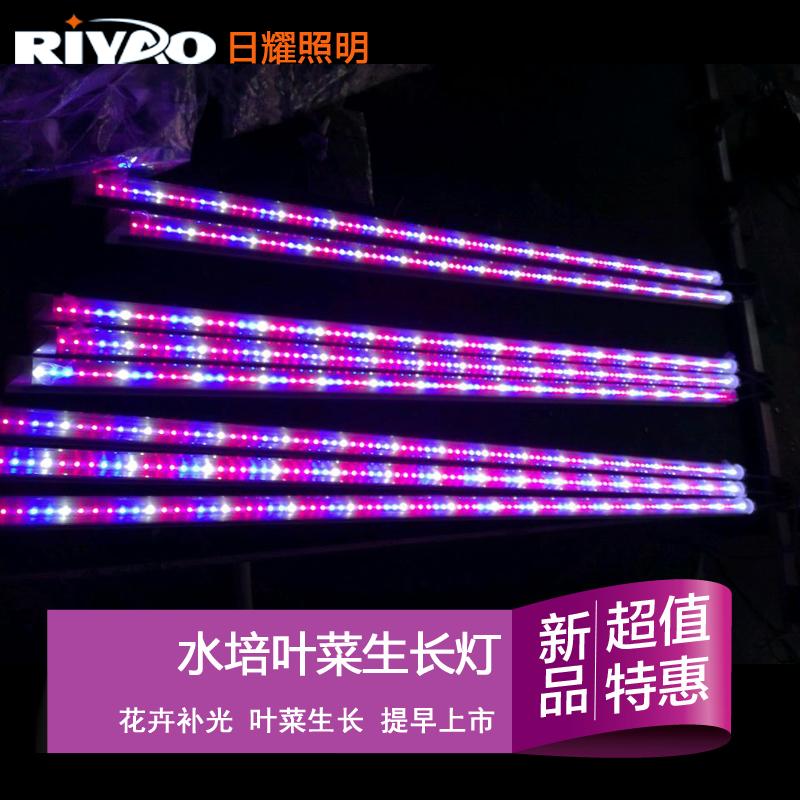 植物生长灯LED补光灯 红蓝白光比例3比2比1