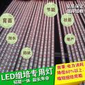 2比3红白配比生长灯 植物补光灯 育苗组培专用灯