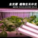 led植物生长灯 全光谱组培灯 T8植物灯